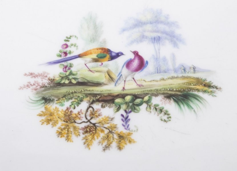 A Look at Some Beautiful Antique Hand-Painted Porcelain Plates