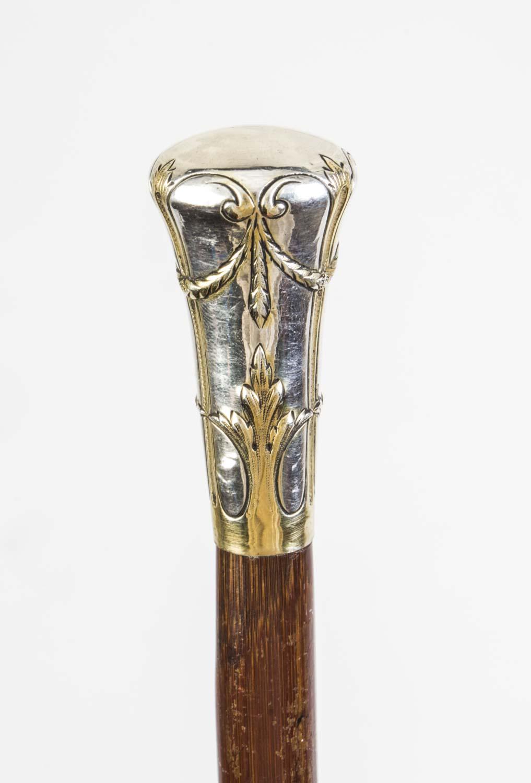 Regent Antiques Walking Sticks And Canes Antique