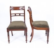 Grand Pair Regency Style Tulip back Side chairs 20th Century