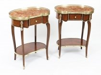 Antique Pair Kidney Occassional Tables Bedside Cabinets 19th Century