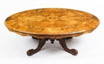 Antique Burr Walnut Marquetry Oval Coffee Table 19th Century