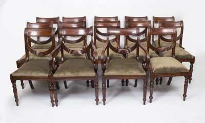Set 12 English Regency Dining Chairs Swag Back
