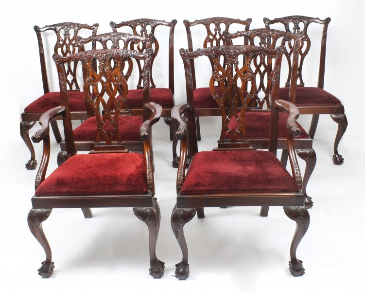 Mahogany dining chairs | Ref. no. 09276 | Regent Antiques