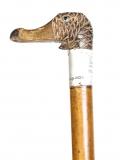 Antique Walking Stick Duck Head Handle Silver Collar 19th C